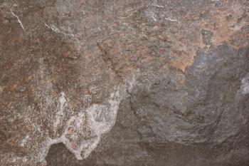 DELHI GRIS (40  x 60)