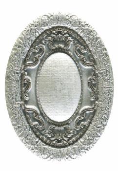 INS RESINA TELA PLATA (8  x 11)