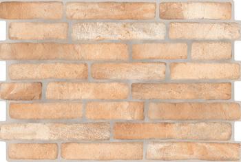 CARAVISTA NATURAL (39 x 58,5 e)