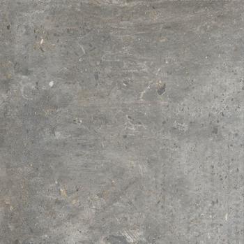 CHARLOTTE GRIS (25  x 25)