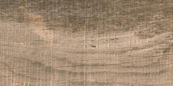 SABINA CREMA 12 (12,5x 25)