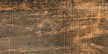SABINA BEIGE 12 (12,5x 25)